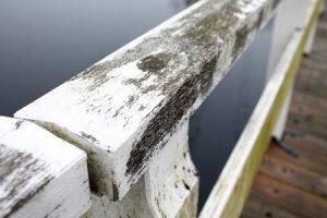 Old varnished layer