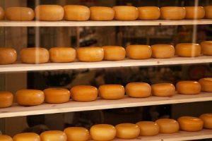 Regale mit mikrobiologisch stabilisiertem Käse