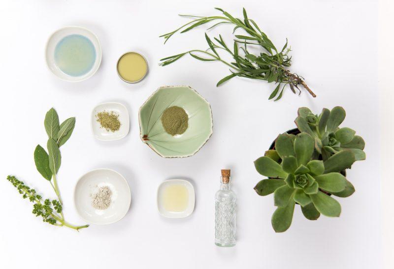 surowce roślinne do kosmetyków naturalnych